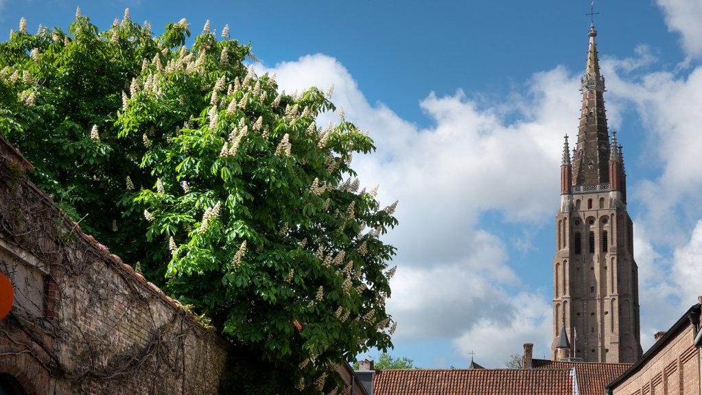 Brugges-206.jpg