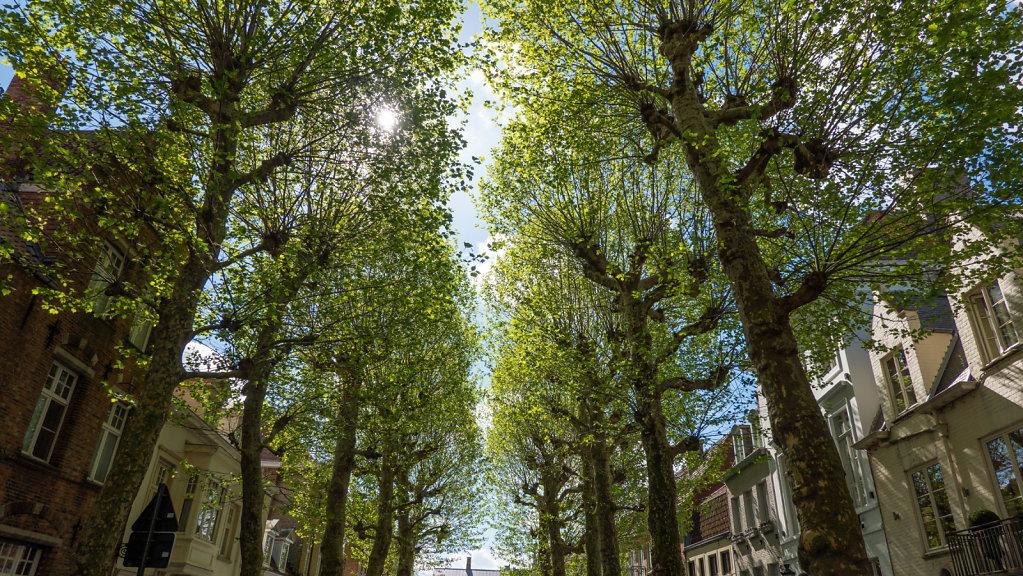 Brugges-202.jpg